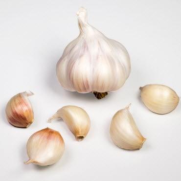 ¿Cómo aumentar el volumen de semen?  Está todo ahí |  Proyecto Da Vinci ...
